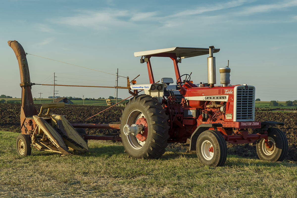 Farmall 1206 in a field at sunset - usually NOT cheap horsepower!